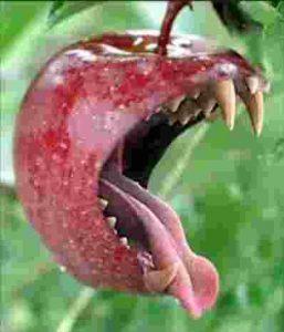 False Prophet bad Fruit